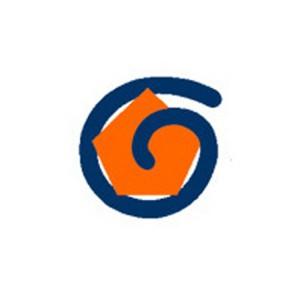 RGI logo-1